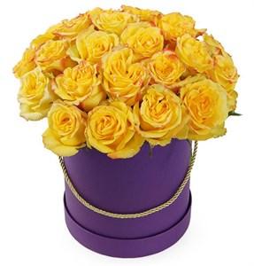 25 роз Хай Еллоу в шляпной коробке
