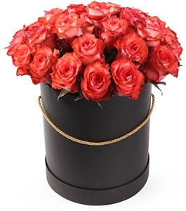 25 роз Игуана в шляпной коробке