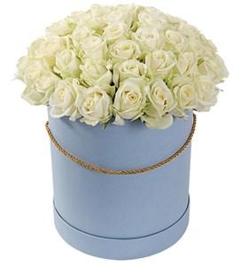 51 роза Аваланш в шляпной коробке